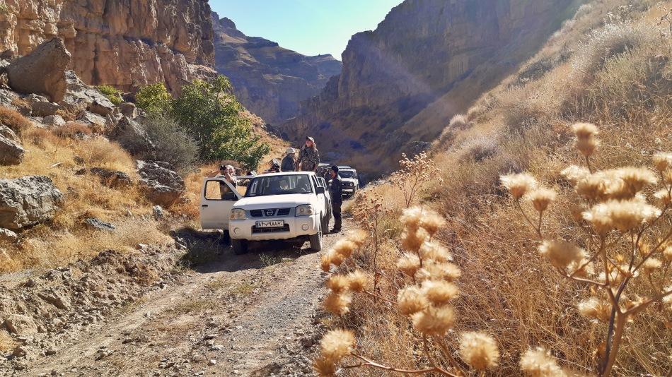 iran-safari