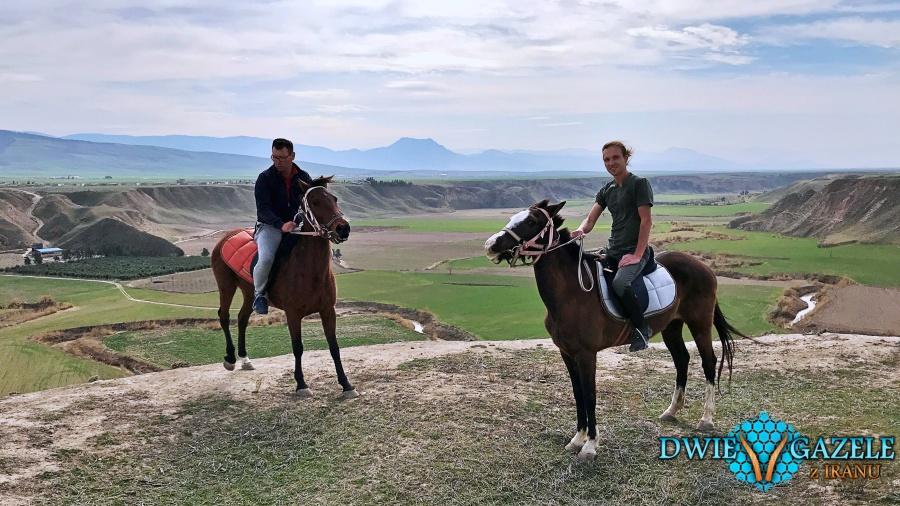 turkmeńskie konie